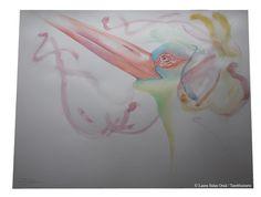 Cigüeña negra española. Acuarela y grafito sobre papel. 50x70 cm, creado en Diciembre 2015. Laura Salas Oraá