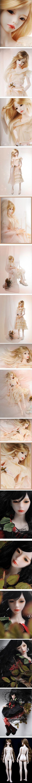 dollmore Zaoll - Basic Luv [Zaoll - Basic Luv] - $179.00 : BJD baby,bjd dolls,bjd doll shop,bjd bragan?a,fairyland,volks bjd,soom,luts bjd,S...