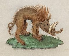 warthog by Public Domain Review, via Flickr
