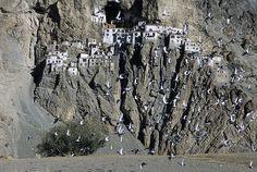 Phuktal monastery, Zanskar  by C.Stramba-Badiali, via Flickr