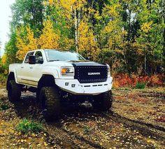 My friend Brandon's truck from Grande Prairie, AB Canada