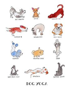 set of isolated cartoon funny dogs icons doing yoga