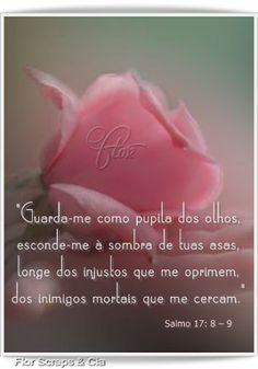 Cantinho de Paz !!!!