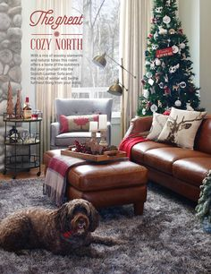 Winter 2015 Catalogue by Urban Barn Urban Barn, Inspiration Boards, Small Rooms, Leather Sofa, Scotch, Furnitures, Brown And Grey, Living Rooms, Christmas Ideas