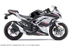 Kawasaki Ninja® 300 ABS SE Pearl Stardust White/Ebony - MSRP $5,499 *CALL FOR CURRENT PRICING* Northway Sports East Bethel, MN (763) 413-8988