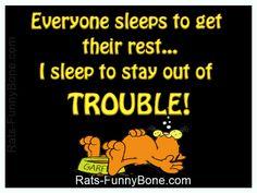 Funny Garfield Saying About Sleep