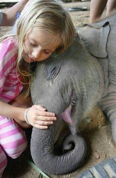 A baby elephant smilies while being held by young girl.