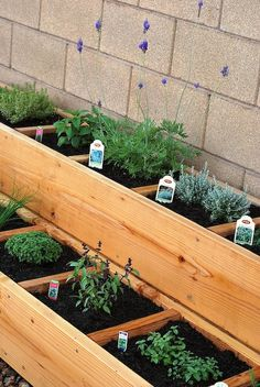 container/raised bed herb gardening... Some of these herbs won't stay small and cute, so would need to plan to plant the taller ones in the upper tiers and maybe with a little bit larger growth area. Beautiful!