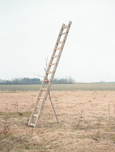 'Self-made sculpture', Sebastian Reiser