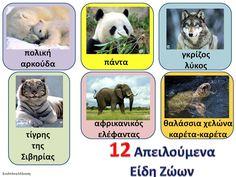 απειλούμενα είδη ζώων