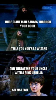 Harry Potter Memes - Only a True Potterhead Can Understand That (Part - . Harry Potter Memes - Only a True Potterhead Can Understand That (Part - . Harry Potter Humor, Hery Potter, Images Harry Potter, Harry Potter World, Potter Facts, Funny Harry Potter Pictures, Harry Potter Stuff, Harry Potter Cast, Harry Potter Universal