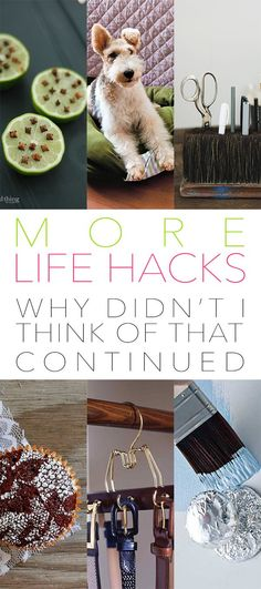 MORE Life Hacks Why DIDN'T I Think Of That Continued - The Cottage Market