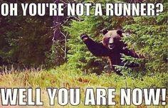 Bear humor.