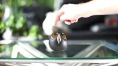 Ulo ist die wohl süßeste Überwachungskamera der Welt. (Grafik:  Vivien Muller)