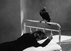 """The Miraculous Virgin"" / Štefan Uher, 1967 Spitting Image, Modern Photographers, Miraculous, Laughter, Black And White, Black Velvet, Crow, Raven, Empty"