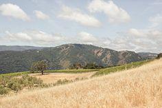 Holman Ranch  http://www.stylemepretty.com/little-black-book-blog/2013/12/26/holman-ranch-wedding/