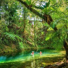 Paradise! This magical place is found at the Heritage Lodge & Spa in the Daintree Rainforest. Swimming in the clear blue water of Cooper Creek was simply surreal!!