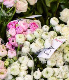 Saxe-Breteuil markets, flowers, Paris, Fashion Week / Garance Doré