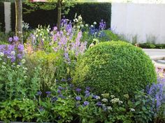 Trees in designer Cleve West's show garden at Chelsea are surrounded by a vibrant bed of perennials, bulbs and herbs including English yew, bay laurel, rosemary, Artemisia schmiidtiana, fennel, thyme and mint.