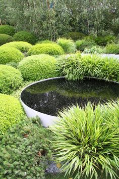 Planting travels in waves across the garden – full of grasses and pine with occasional islands of clipped yew and box. Beautiful specimens of photinias, bamboos trees Sky Garden, Garden Pool, Water Garden, Dream Garden, Garden Cottage, Garden Landscaping, Pine Garden, Herbs Garden, Fruit Garden