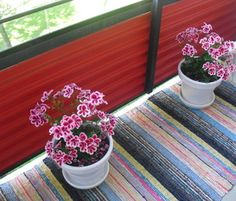 Kaunista! Suomalainen parvekematto, kukilla...