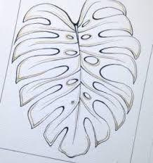 Resultado de imagem para desenho costela de adao