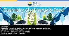 ACS 2013 American Chemical Society Spring National Meeting and Expo 뉴올리언즈 미국 화학학회 박람회