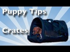 Crate Training Tips for PUPPIES - YouTube