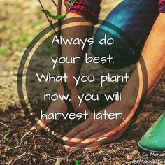 Always do your best. Action Words, Morning Flowers, Do Your Best, Happy Thoughts, Self Improvement, Cool Words, Favorite Quotes, Leadership, Life Quotes