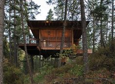 Cabin on Flathead Lake / Andersson-Wise Architects