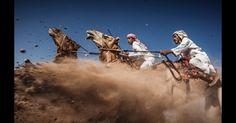 A terceira colocada, ?Camel Ardah?, de Ahmed Al Toqi, de Muscat, Omã, captura um forte momento durante uma tradicional corrida de camelo