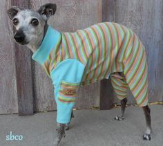 Sherbet,Stripes,Custom,Cotton,Dog,Lounger-Custom,Made,large,sun protection for dogs, italian greyhound, chinese crested, best pet clothes, organic dog clothing