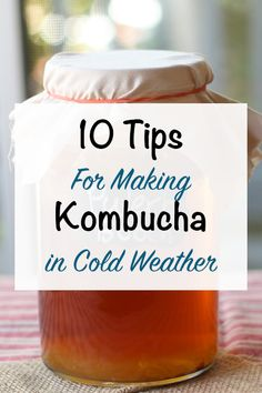 10 Tips For Making Kombucha In Cold Weather. Is your kombucha taking longer to ferment than usual? Are you having a hard time getting it to ferment at all? Making Kombucha, Kombucha Scoby, How To Brew Kombucha, Kombucha Brewing, Organic Kombucha, Homebrewing, Kombucha Flavors, Kombucha Recipe, Probiotic Drinks