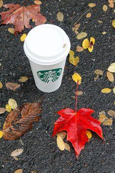 Starbucks and autumn