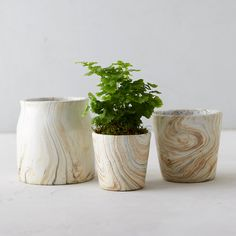 "An elegant, marbled finish tops this sturdy cement planter in a traditionally tapered shape.- Cement- Indoor or sheltered outdoor use- Drainage hole not included- ImportedSmall: 4.4""H, 4""D, 4.5"" diameterLarge: 5.5""H, 5""D, 5.75"" diameter"