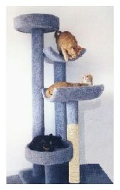 Cat Tree w/ multiple towers