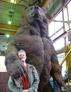 Tree Carving, Wood Carving Art, Wood Art, Wood Carvings, Got Wood, Bear Art, Wood Creations, Sculpture Clay, Animal Sculptures