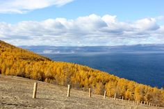 After driving a few hours to Lake Baikal, we eventually reached the village called Khuzhir on Olkhon Island. Lake Baikal Russia, Siberian Forest, Eurasian Steppe, Planets, Island, Mountains, Traveling, English, Autumn