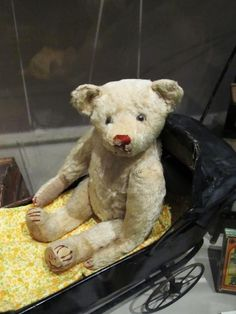 Old White Teddy with Blue Eyes from Museum