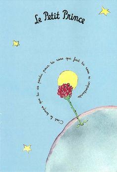 """""""C'est le temps que tu as passé pour ta rose qui fait ta rose si importante."""" Beautiful symbolism of the rose in the book """"Le Petit Prince""""."""