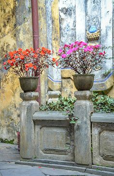 """""""Scenes in old district of Hoi An"""" by TravelPod blogger momentsintime from the entry """"Walking tour in old Hoi An - part 1"""" on Saturday, March  1, 2014 in Hoi An, Vietnam"""