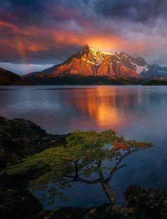 "coiour-my-world: ""The Observer ~ Lake Pehoe ~ Luis Felipe Peña Sandoval """