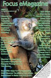 Focus Ezine Subscription 1st 12 month subscription