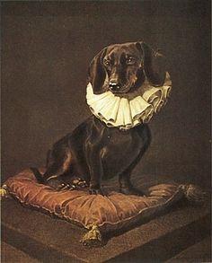 DACHSHUND SMOOTH DAXI HOUND DOG FINE ART PRINT DRESSED