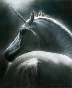 Beauty Divine by Katy L Rewston ~ Unicorn
