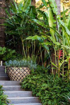Small Tropical Gardens, Tropical Garden Design, Garden Landscape Design, Palm Beach Gardens, Bali Garden, Balinese Garden, Dream Garden, Tropical Backyard Landscaping, Fence Landscaping