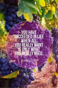 """""""You have succeeded in life when all you really want is only what you really need."""" Vernon Howard Click through for all 150 positive life quotes! Positive Quotes For Life, Inspiring Quotes About Life, Happy Quotes, Great Quotes, Life Quotes, Coping With Stress, Improve Mental Health, Positive Psychology, Inspirational Books"""