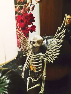 Keep your wits about you when you celebrate Halloween in Dublin at The Fitzwilliam Hotel. Spooky Decor, Halloween Decorations, Samhain, Dublin, Celtic, Fall, Holiday, Autumn, Vacations