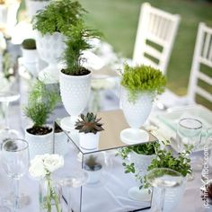 Image result for potted delphinium table decoration