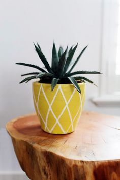 60 Pottery Painting Ideas to Try This Year Slab Pottery, Glazes For Pottery, Pottery Vase, Ceramic Pottery, Painted Pottery, Pottery Painting Designs, Pottery Designs, Pottery Ideas, Pineapple Planting